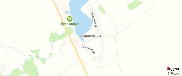 Карта деревни Павловичи в Брянской области с улицами и номерами домов