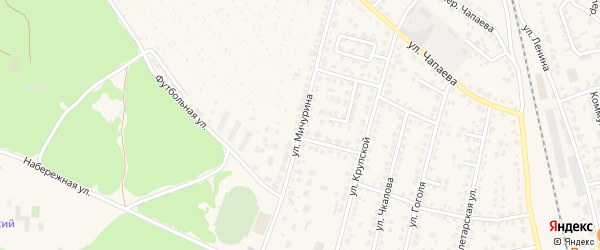 Улица Мичурина на карте Жуковки с номерами домов