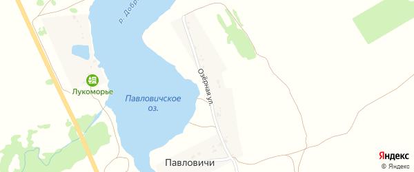 Озерная улица на карте деревни Павловичи с номерами домов
