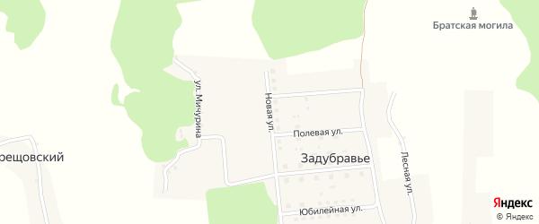 Новая улица на карте деревни Задубравья с номерами домов