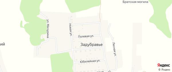 Полевая улица на карте деревни Задубравья с номерами домов