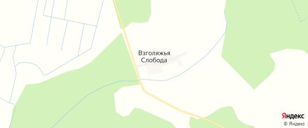 Карта деревни Взголяжьей Слободы в Брянской области с улицами и номерами домов