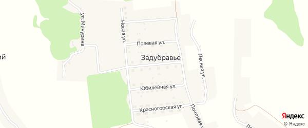 Сельская улица на карте деревни Задубравья с номерами домов