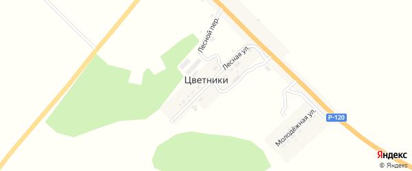 Шоссейная улица на карте поселка Цветники с номерами домов