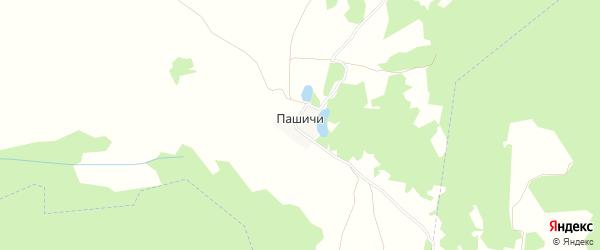 Карта поселка Пашичей в Брянской области с улицами и номерами домов