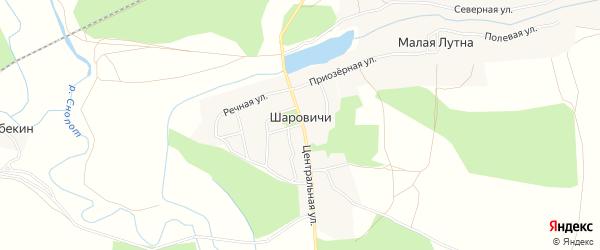 Карта деревни Шаровичи в Брянской области с улицами и номерами домов