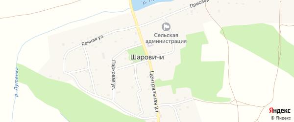 Центральная улица на карте села Шаровичи с номерами домов