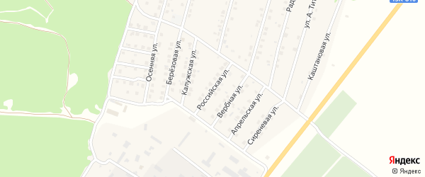 Российская улица на карте Жуковки с номерами домов