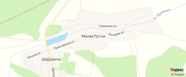 Карта деревни Малой Лутны в Брянской области с улицами и номерами домов