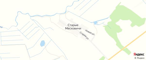 Карта деревни Старые Месковичи в Брянской области с улицами и номерами домов