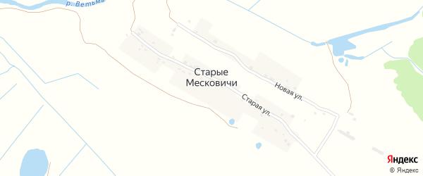 Новая улица на карте деревни Старые Месковичи с номерами домов