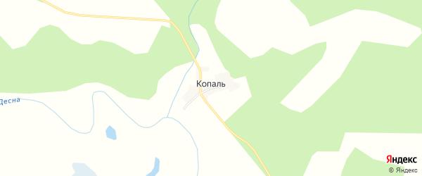 Карта деревни Копали в Брянской области с улицами и номерами домов
