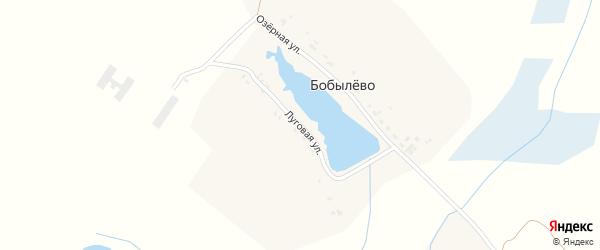 Луговая улица на карте деревни Бобылево с номерами домов