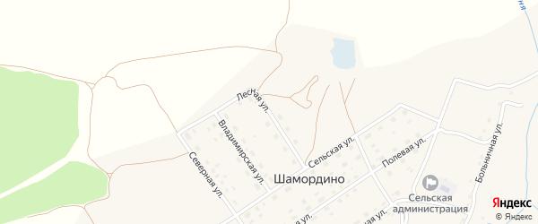 Лесная улица на карте деревни Шамордино с номерами домов