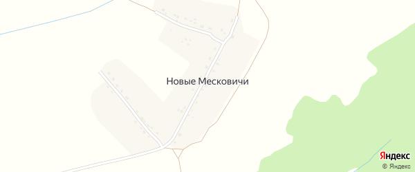 Улица Гагарина на карте деревни Новые Месковичи с номерами домов
