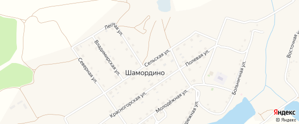 Сельская улица на карте деревни Шамордино с номерами домов