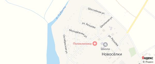 Молодежная улица на карте села Новоселки с номерами домов