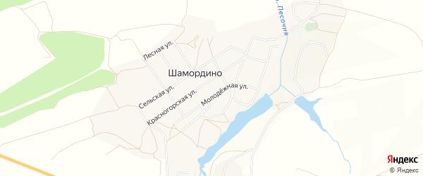 Карта деревни Шамордино в Брянской области с улицами и номерами домов