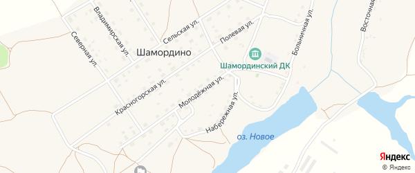Молодежная улица на карте деревни Шамордино с номерами домов