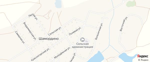 Полевая улица на карте деревни Шамордино с номерами домов