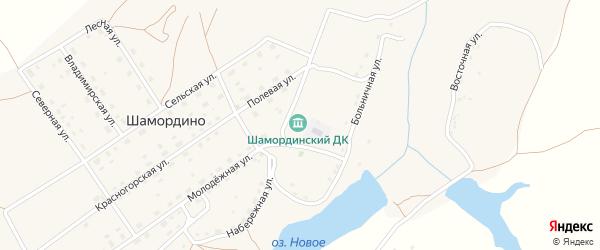 Территория Паи им Мичурина на карте территории Шамординского сельского поселения с номерами домов