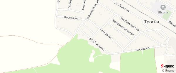 Улица Осипенко на карте поселка Тросны с номерами домов