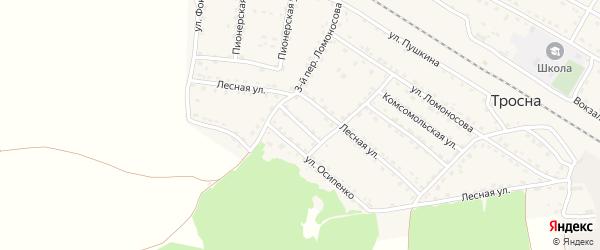 Переулок Осипенко на карте поселка Тросны с номерами домов