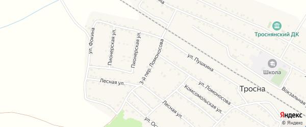 Ломоносова 3-й переулок на карте поселка Тросны с номерами домов