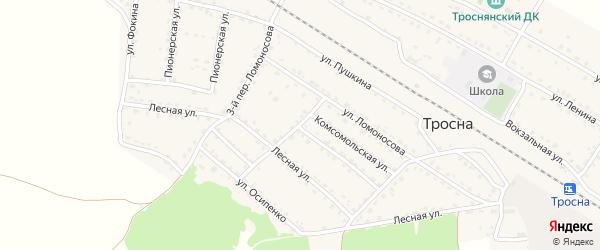 Ломоносова 2-й переулок на карте поселка Тросны с номерами домов