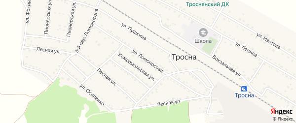 Улица Ломоносова на карте поселка Тросны с номерами домов