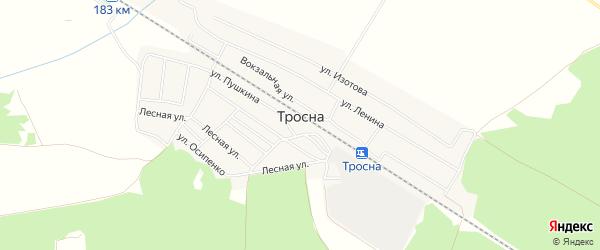 Карта поселка Тросны в Брянской области с улицами и номерами домов