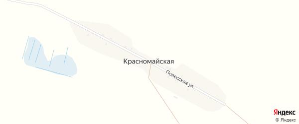 Полесская улица на карте Красномайской деревни с номерами домов