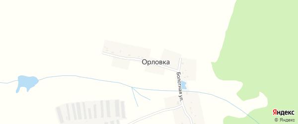 Болотная улица на карте деревни Орловки с номерами домов