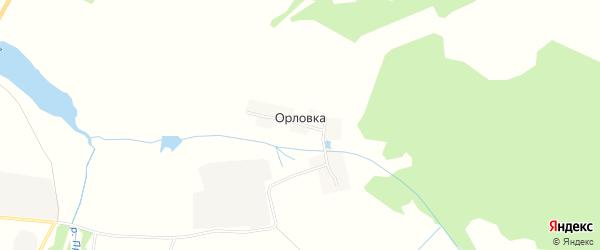 Карта деревни Орловки в Брянской области с улицами и номерами домов