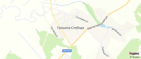 Карта деревни Гришиной Слободы в Брянской области с улицами и номерами домов