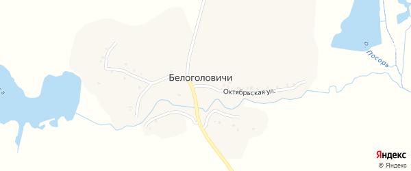 Октябрьская улица на карте деревни Белоголовичи с номерами домов