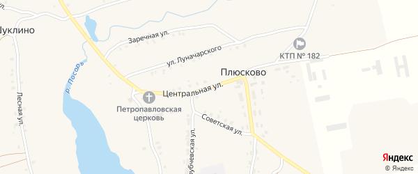 Центральная улица на карте села Плюсково с номерами домов