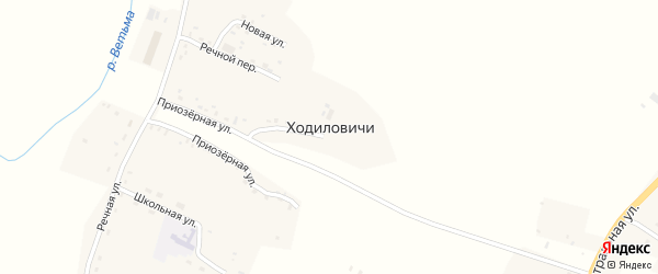 Курсовая улица на карте деревни Ходиловичи с номерами домов