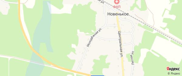 Молодежная улица на карте поселка Новенького с номерами домов