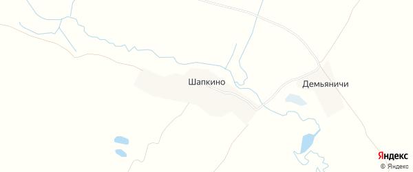 Карта деревни Шапкино в Брянской области с улицами и номерами домов