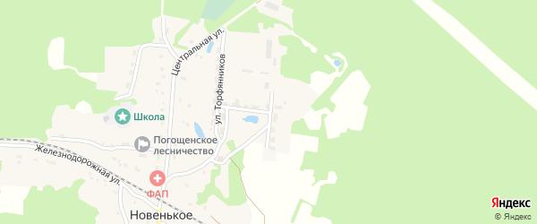 Тупиковая улица на карте поселка Новенького с номерами домов