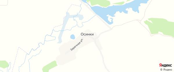 Карта деревни Осинки в Брянской области с улицами и номерами домов