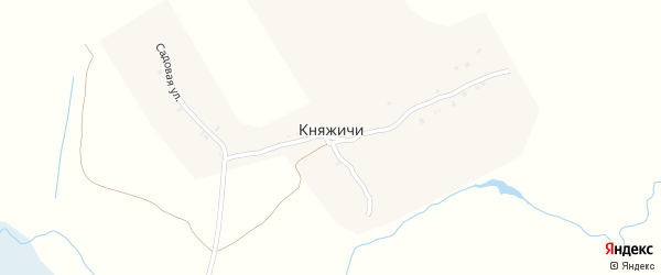 Садовая улица на карте села Княжичи с номерами домов