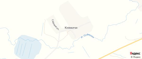 Карта села Княжичи в Брянской области с улицами и номерами домов