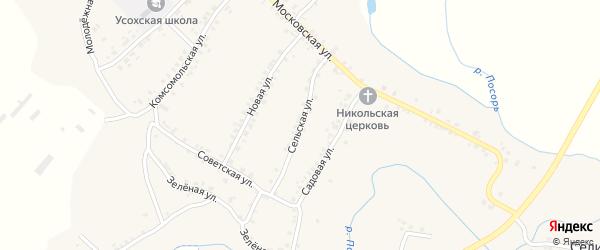Сельская улица на карте села Усоха с номерами домов