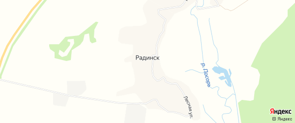 Карта деревни Радинска в Брянской области с улицами и номерами домов