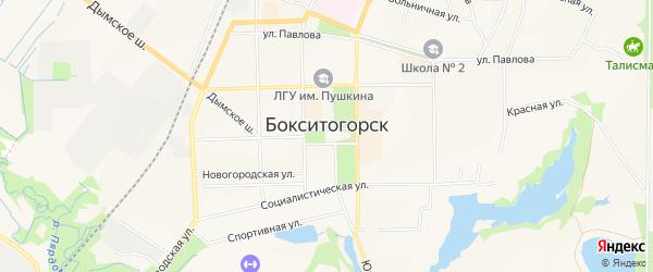 Карта садового некоммерческого товарищества Щита города Бокситогорска в Ленинградской области с улицами и номерами домов