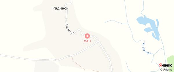 Лесная улица на карте деревни Радинска с номерами домов