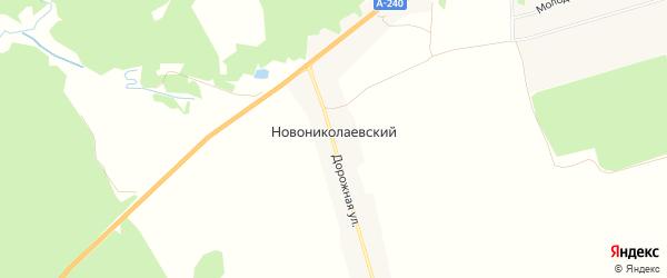 Карта Новониколаевского поселка в Брянской области с улицами и номерами домов