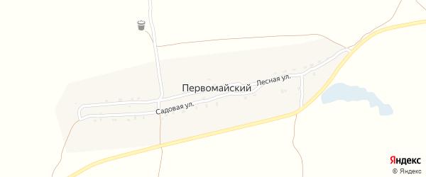 Лесная улица на карте Первомайского поселка с номерами домов